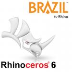 rhino-brazil