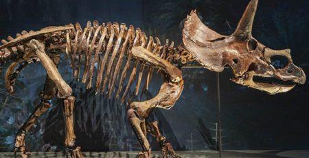printare 3d dinozauri