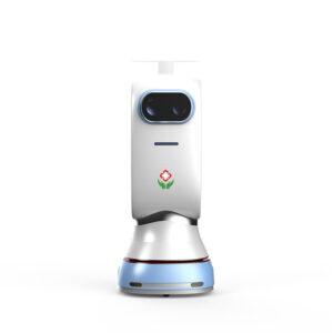 robot utilitar